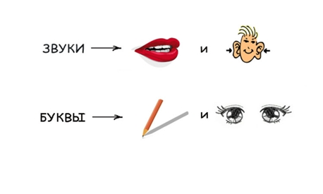 буквы и звуки картинка